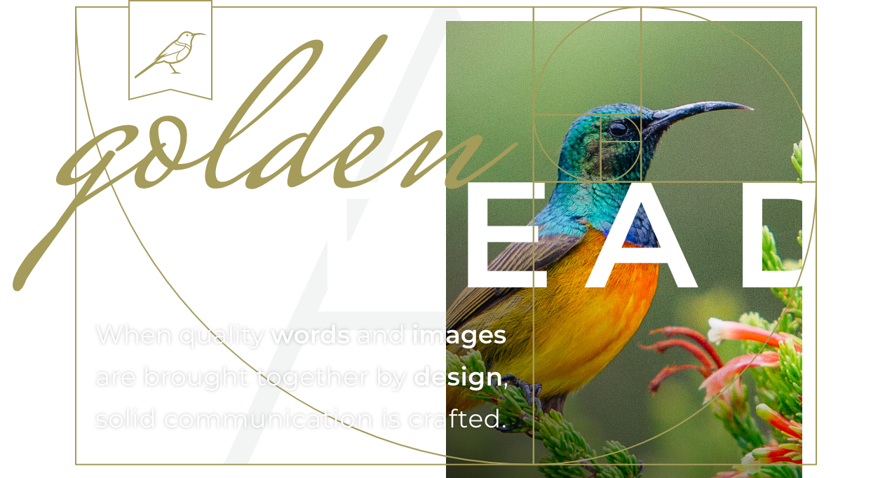 A golden thread: Design, words and photos combined