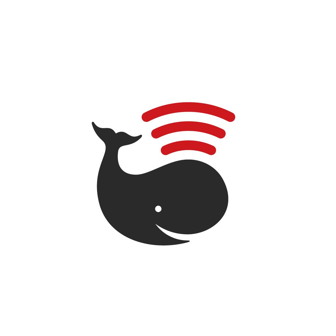 Logo design by Solid Stuff Creative Studio